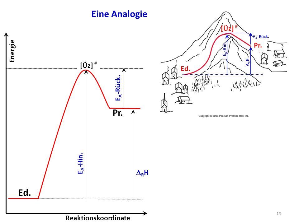 Eine Analogie Pr. Ed. [Üz] # Pr. Energie [Üz] # Ed. EA-Rück. EA-Hin.